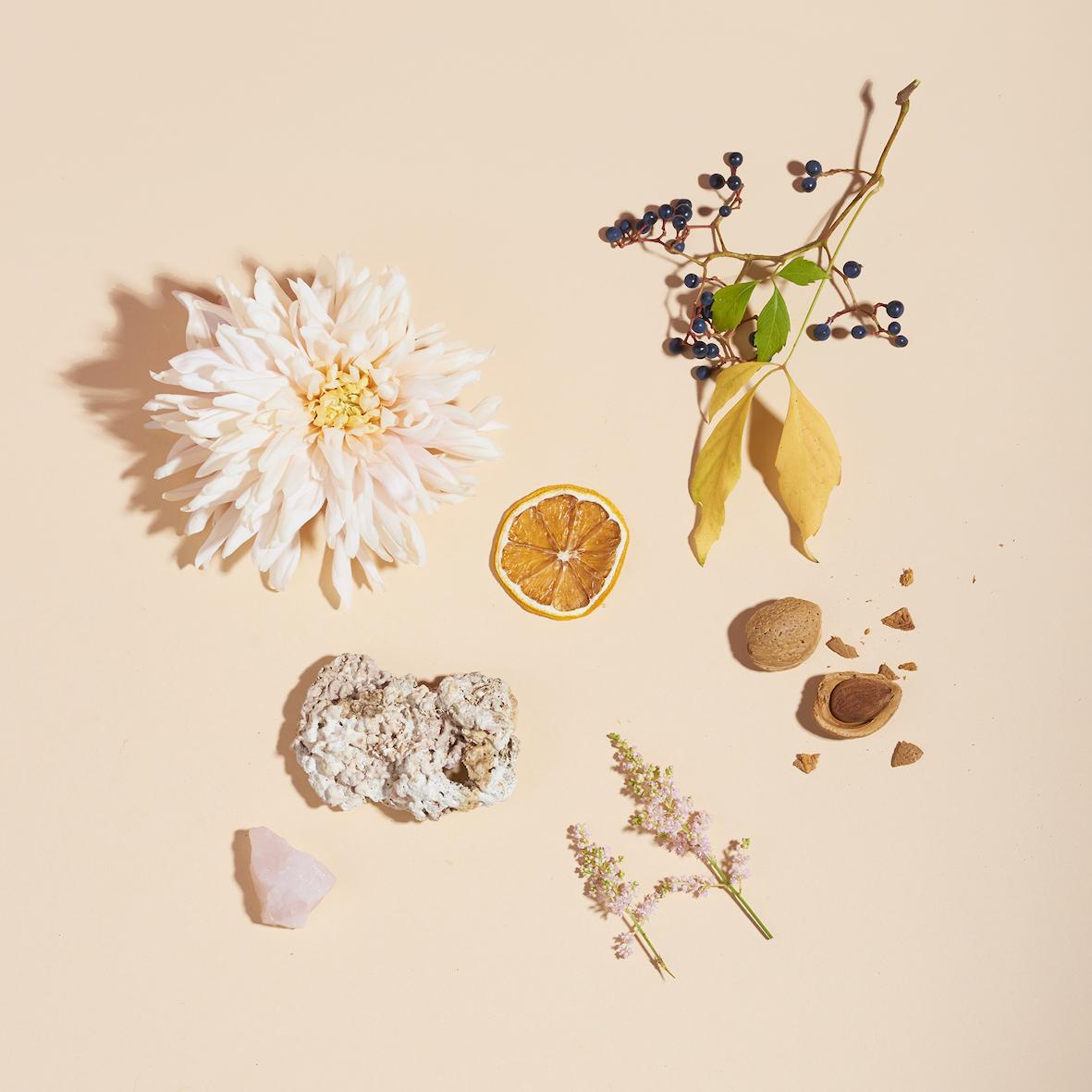 Moodbild von Lovely Day mit Blumen und Früchten