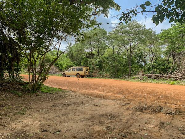 Wir landeten mitten im Busch auf unserer Safari in Tansania im Selous Game Reservat.