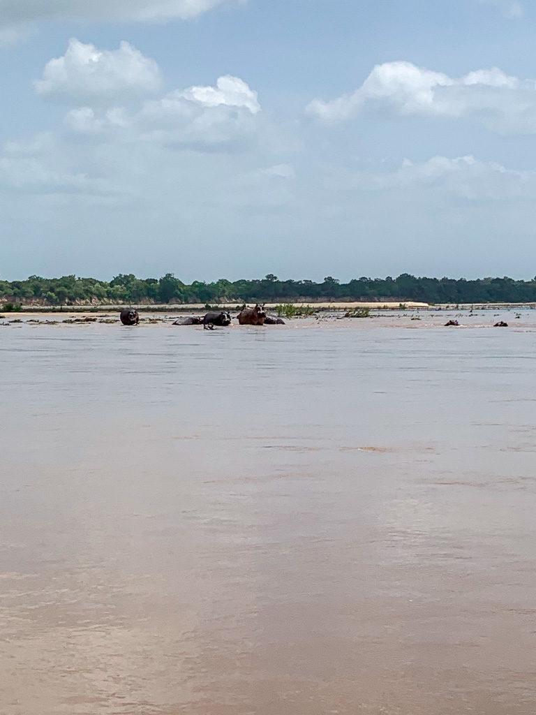 Boots auf dem Rufiji River auf der Safari in Tansania im Selous Game Reservat.-
