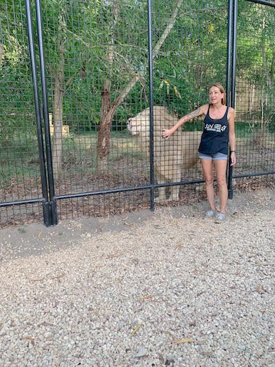 Gründerin Jenny mit einem weißen Löwen im Wildtierreservat Cheetah's Rock.