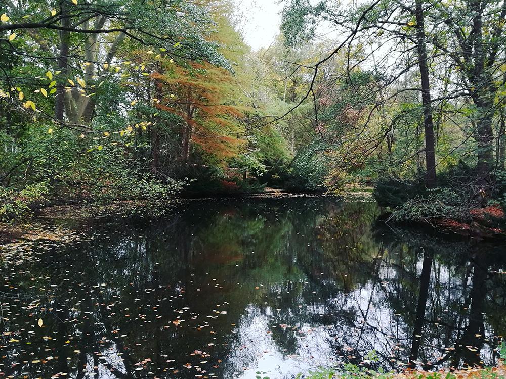 Berlin's schönste Laufstrecken
